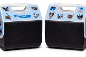 IGLOO RELEASES PLAYMATES FEATURING ITS EMPLOYEES' RESCUE PETS TO RAISE FUNDS FOR THE ASPCA